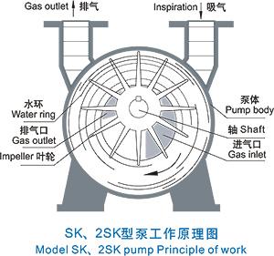 五元环结构图
