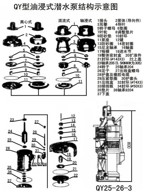 5-40-3潜水电泵结构示意图