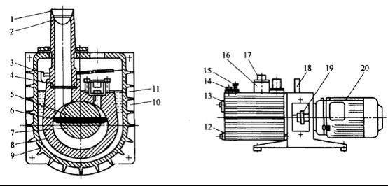 图1 旋片式真空泵结构示意图