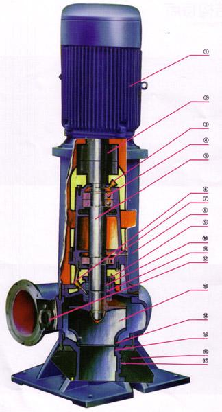 wl系列干式便拆立式排污泵结构图
